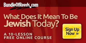 What Does It Mean To Be Jewish Today? - A 10-Lesson Free Online Course | Like A Bundle of Reeds